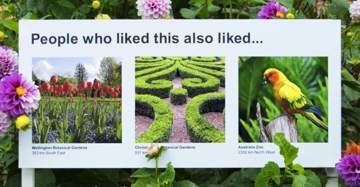 Algorithmes recommandation humour