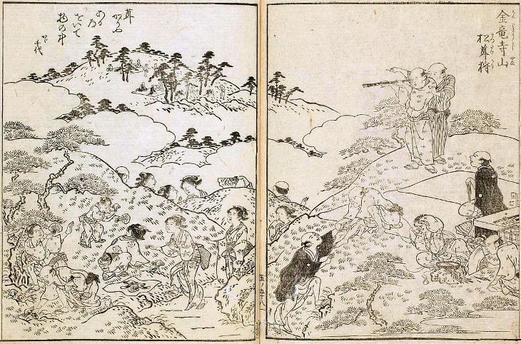 Matsutake cueillette dessin japon