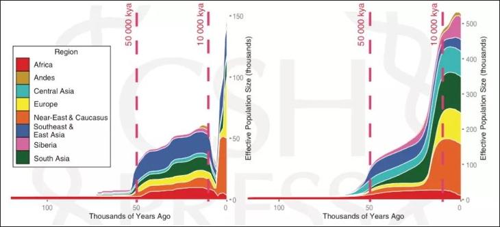 Ratio reproduction hommes femmes préhistoire