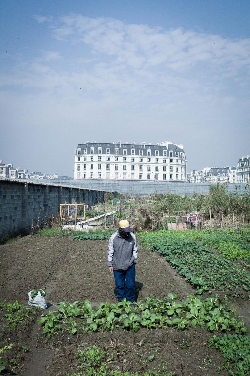 Jardin faux Paris Chinois