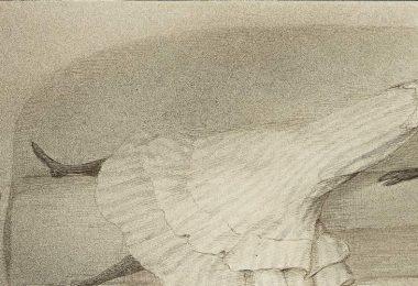 Exposition Freud Musée Judaïsme