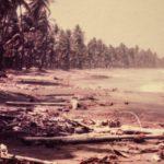 Rapport ONU lois environnement
