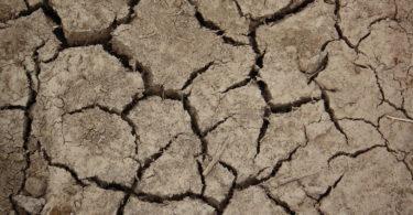 Sécheresse Changement climatique