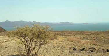 Lac Turkana Berceau Humanité