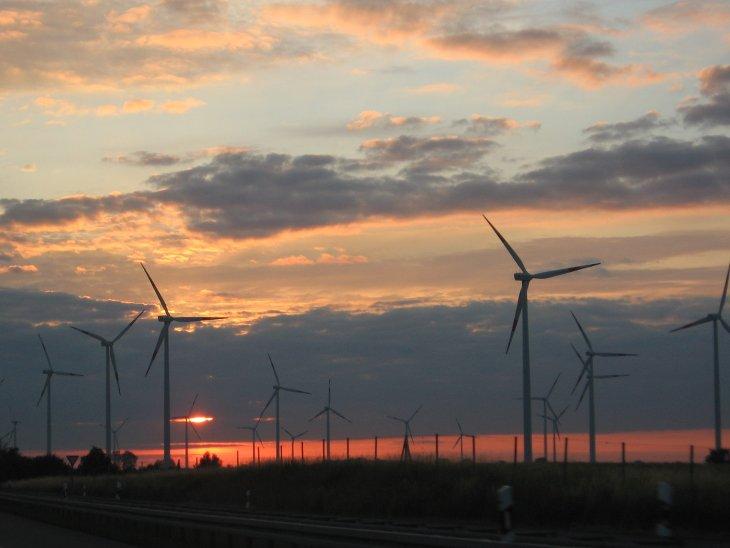 Changement climatique biodiversité éoliennes