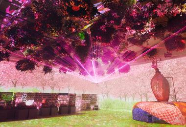 Ecolinguistique jardin numérique home